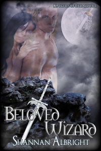 Beloved Wizard cover