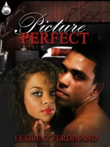 Picture Perfect cover - click to see on Goodreads