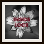 click the Inside Look logo for all the interview's here at SJ's