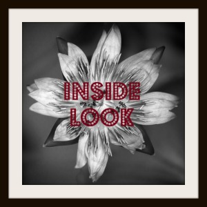 Inside Look logo by SJ