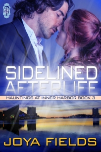 SidelinedAfterlife cover - click to see on Goodreads