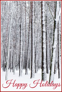 bigstock-Winter-Forest-56265137 - happy holidays