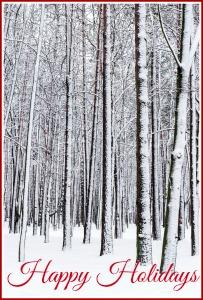 bigstock-Winter-Forest-56265137 - happy holidays