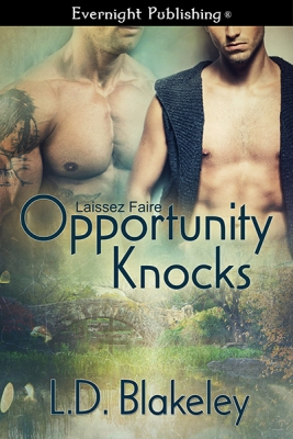 OpportunityKnocks-evernightpublishing-JayAheer2015-smallpreview
